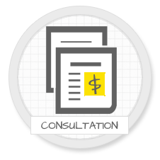 eCommerce Consulting